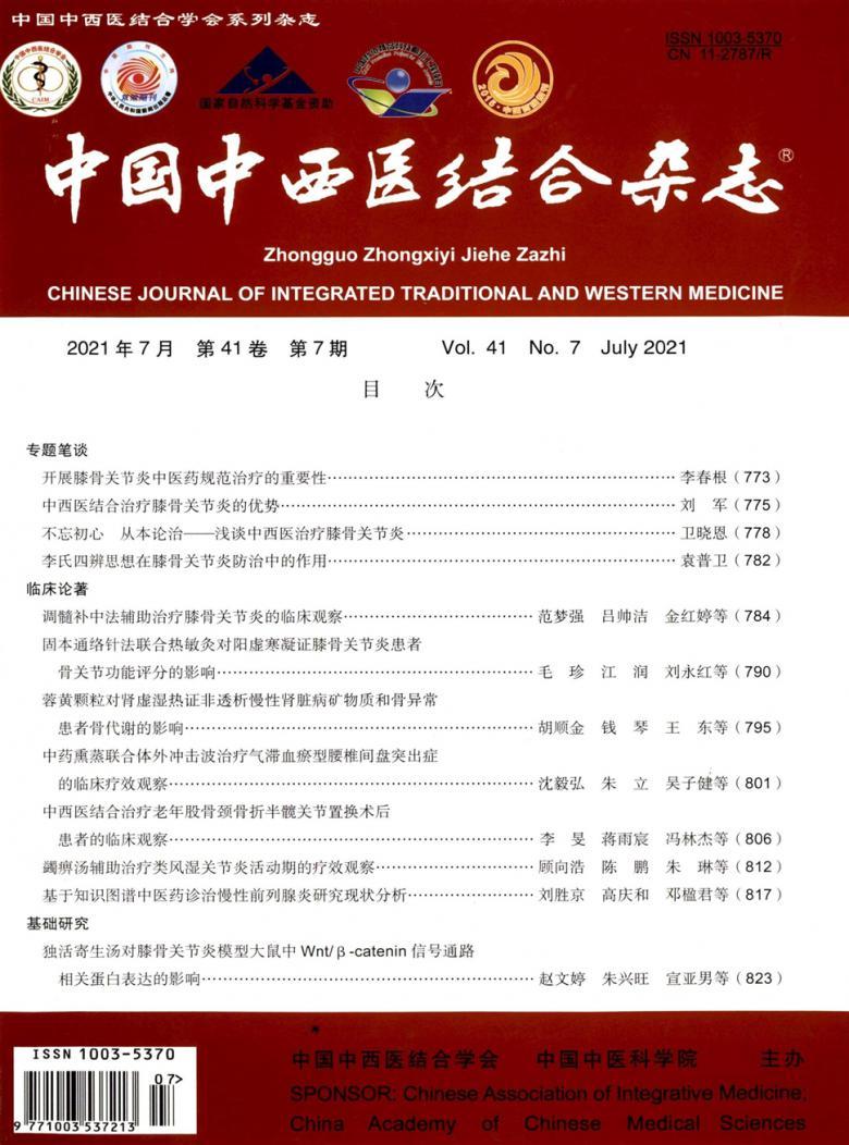 中国中西医结合