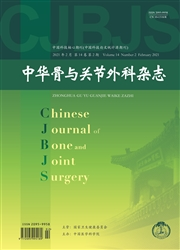 中华骨与关节外科