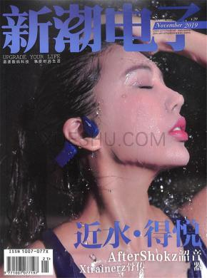 新潮电子杂志社
