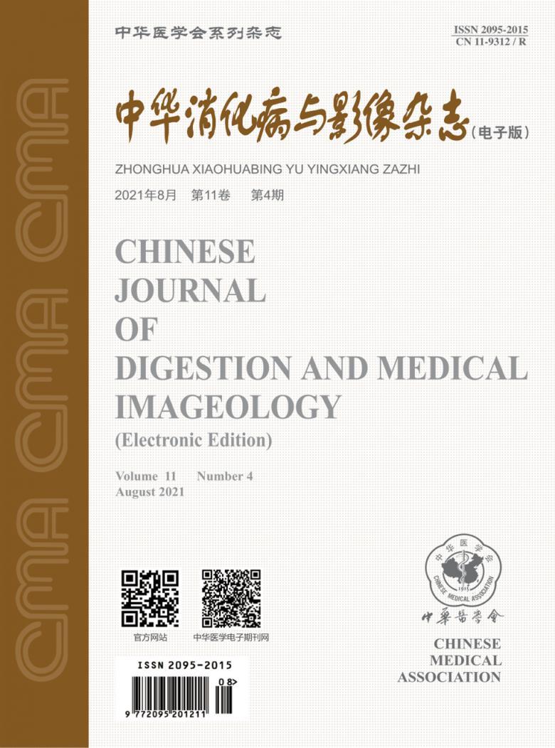 中华消化病与影像