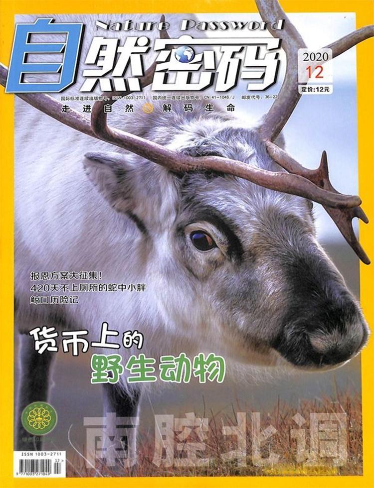 自然密码杂志