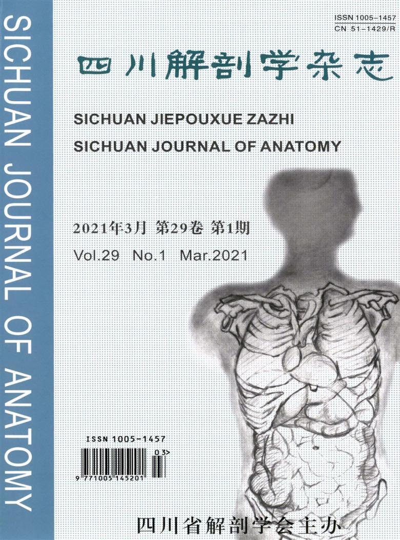 四川解剖学