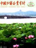 中国乡镇企业会计
