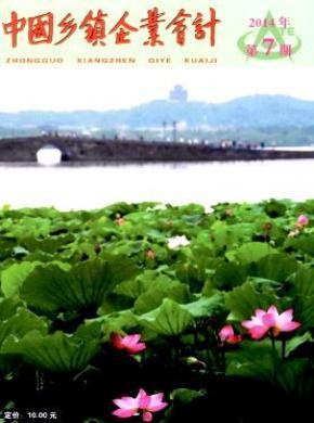 中国乡镇企业会计杂志