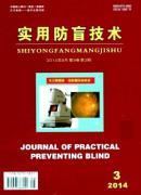 实用防盲技术