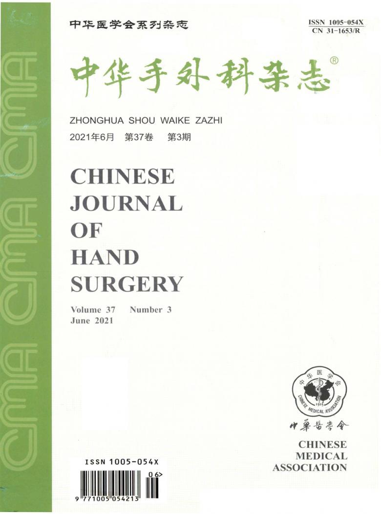 中华手外科